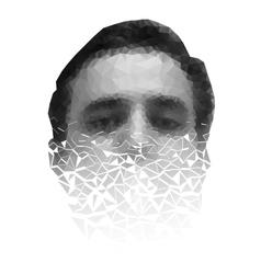 Polygonal face a man crumbling to pieces vector