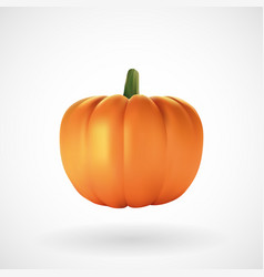 realistic pumpkin with white background vector image