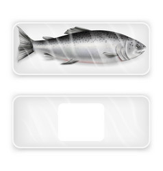 Salmon fish package mockup set realistic vector