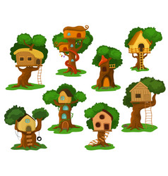 Tree house wooden playhouse building on oak vector