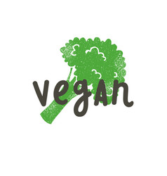 vegan calligraphy and broccoli silhouette vector image