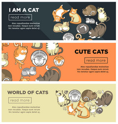 World of cute cats promotional internet posters vector