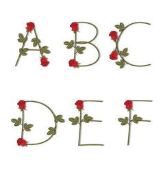 Floral alphabet Red roses with shadow from A to F vector image
