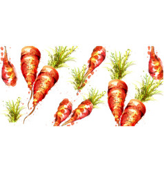 carrots pattern watercolor fresh spring vector image