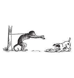 monkey and dog vintage vector image