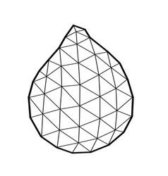 Polygonal salak salacca or zalacca fruit vector