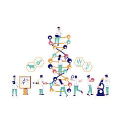 scientists studying dna in biotechnology lab vector image