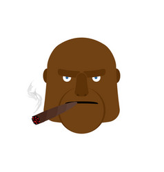 angry man with cigar aggressive african face vector image