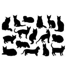 16 hand drawn cat silhouettes vector image