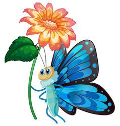Blue butterfly holding flower on white background vector