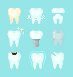 cute teeth colorful set with different vector image