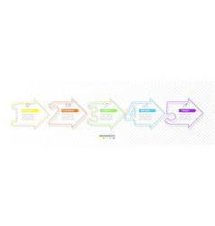 set minimal infographic options vector image
