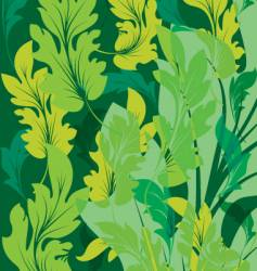 summer green leaves vector image