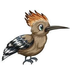 Upapa bird vector