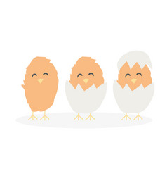 cartoon cute easter baby chikens hatched from egg vector image