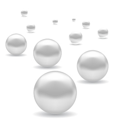 Set of White Pearl vector image