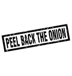 square grunge black peel back the onion stamp vector image vector image