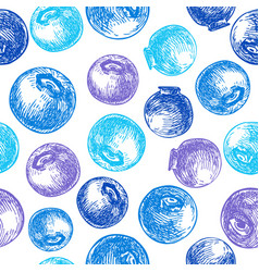 blueberry seamless pattern drawing vector image