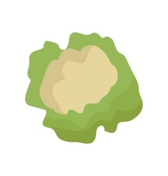 Cauliflower in Flat Style vector