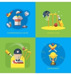 Cricket 2x2 Flat Icons vector image