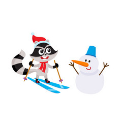 cute skiing raccoon character and funny snowman vector image