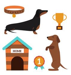dachshund dog playing elements vector image