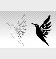 Flying bird - dove or pigeon spreads its wings vector