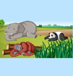 Scene with three animals in field vector