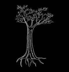 tree isolated on black vector image
