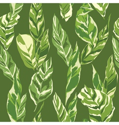 Tropical Leaves Background vector