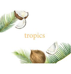 watercolor card with coconut and palm vector image
