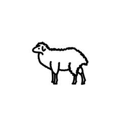 web line icon sheep livestock black on white vector image