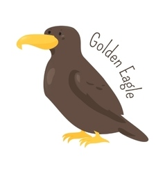 Golden eagle isolated on white vector image vector image