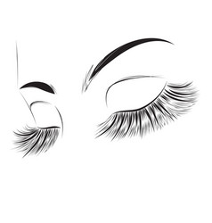 closed female eyes drawing vector image