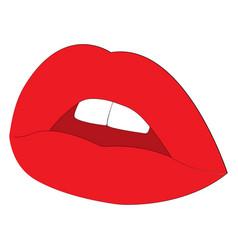 woman lips vector image vector image