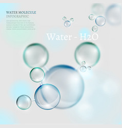 06 Infographics Bio Bubble vector