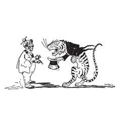Animal alphabet t tiger vintage vector