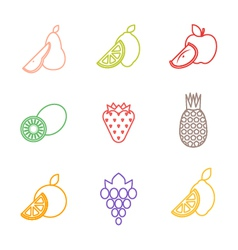 Color outline various fruits icons vector