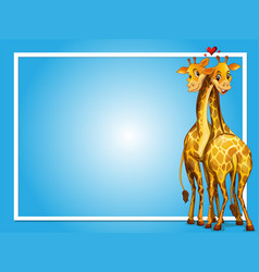 frame design with two giraffes vector image