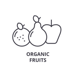 organic fruits line icon outline sign linear vector image