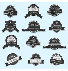 Set of 12 Premium Quality labels vector image