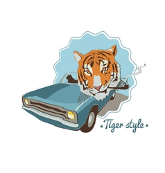 Smoking tiger portret in blue retro car vector