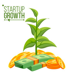 Startup growth concept plant growing in vector