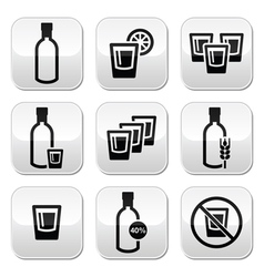 Vodka strong alcohol buttons set vector