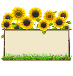 wooden frame with sunflowers vector image vector image