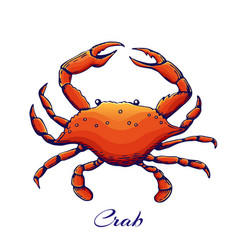 blue crab red sea animal with claws engraved vector image