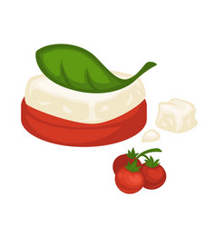 Exquisite dish of soft cheese and cherry tomato vector