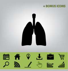 human anatomy lungs sign black icon at vector image