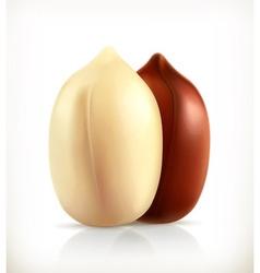 Peanuts icon vector image