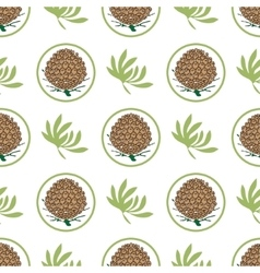 Seamless pattern with pine cones Fir cedar vector